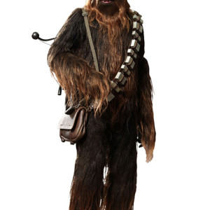 Chewbacca-Hot-Toys