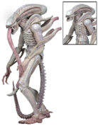albino-alien-aliens-actionfigur-series-9
